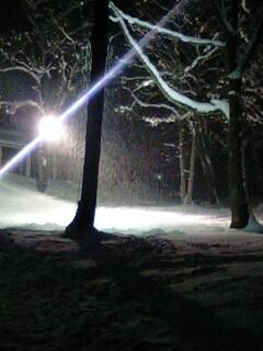 雪よ、もっと降ってくれ…。