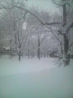 雪のラボランド