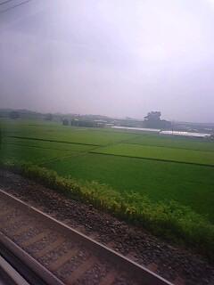 栃木・利根川周辺。