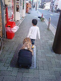旅するトラミ。